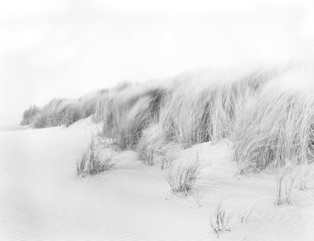 Blowing Dunes, 2003