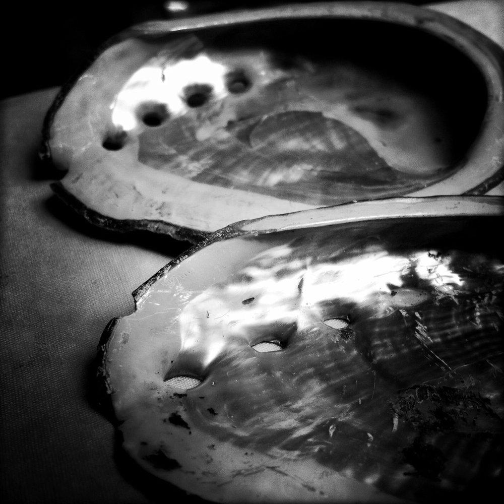 Abalones, 2012