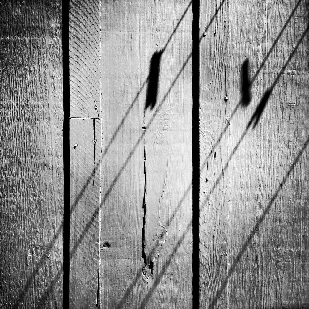 Pin Shadows, 2012