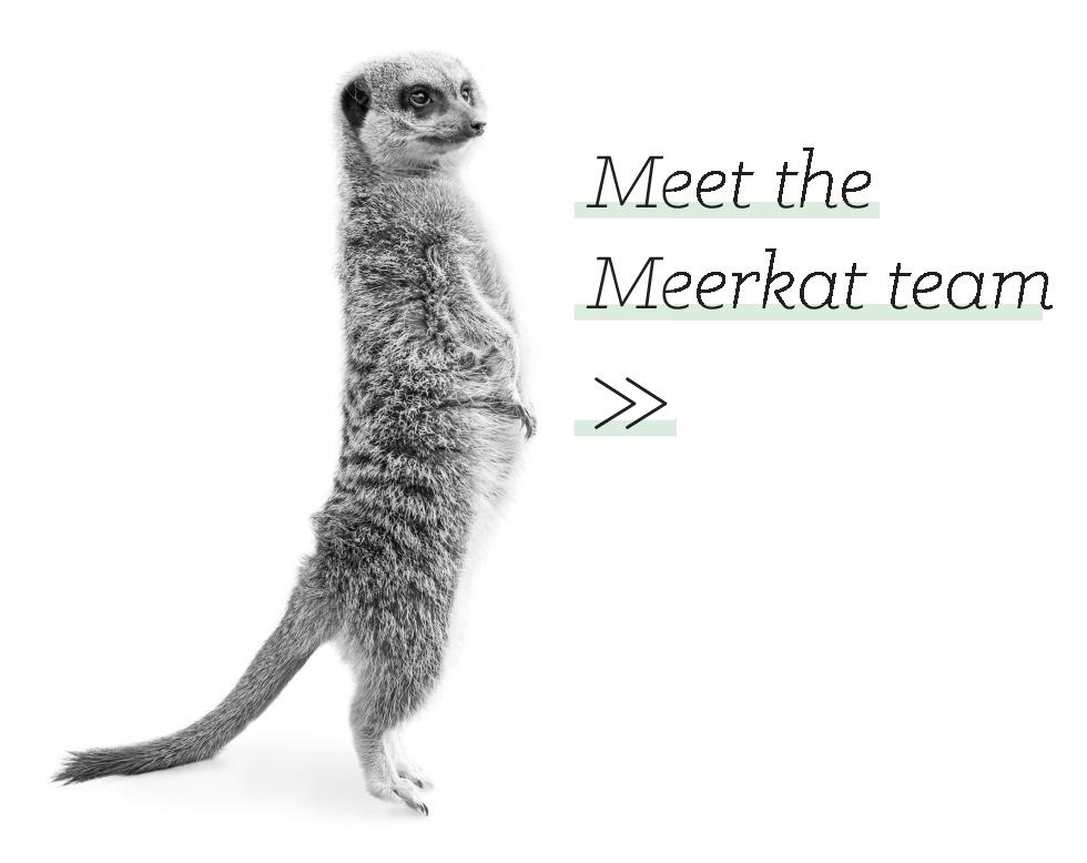 Meerkat Site Update-08.png