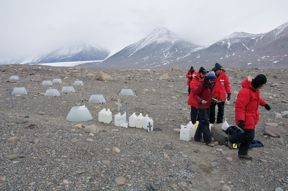 Diana Wall and company sample soils in the McMurdo Dry Valleys