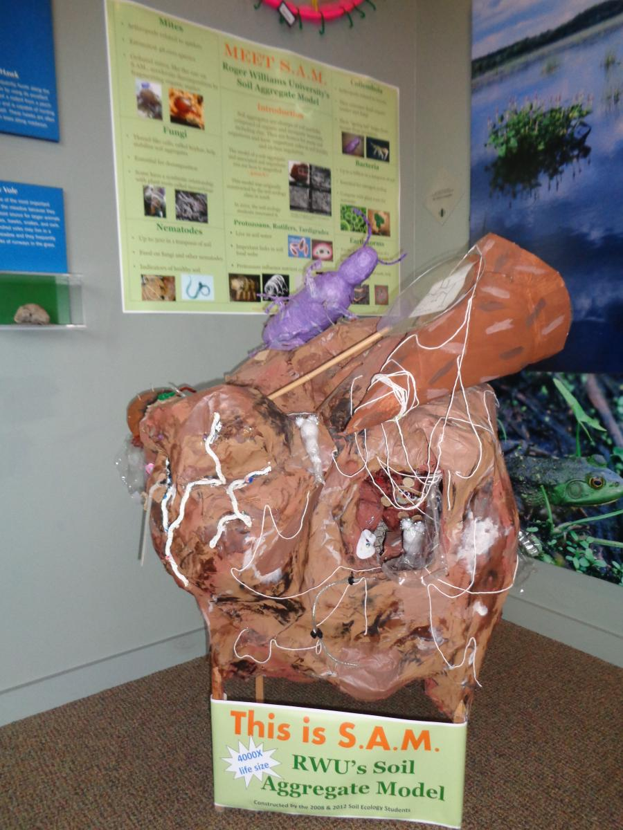 A soil aggregate model, constructed by the author's students, was displayed in an environmental education center to spark conversation about soils. Photo courtesy of L. Byrne.