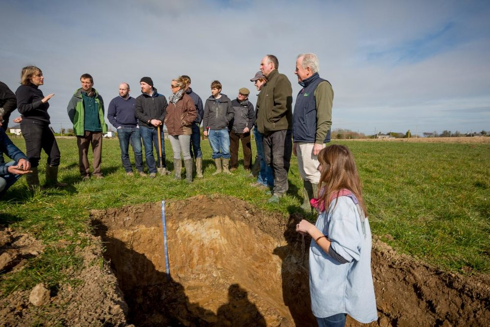 Farmers examine a soil profile