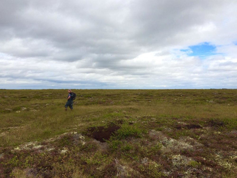 Becoming grounded on the Alaska tundra. Image from P. Bogard