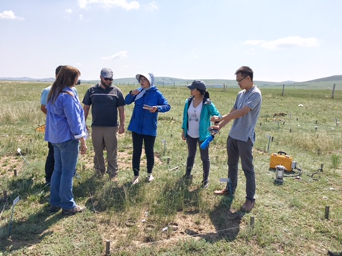 Collaborators discuss grassland soil carbon research near Hulanbuir, China. Photo credit Jiqiong Zhou
