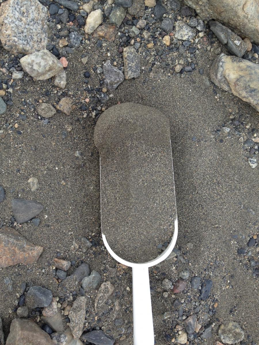 Soil sample collected in Taylor Valley, Antarctica. Photo by A. Shaw