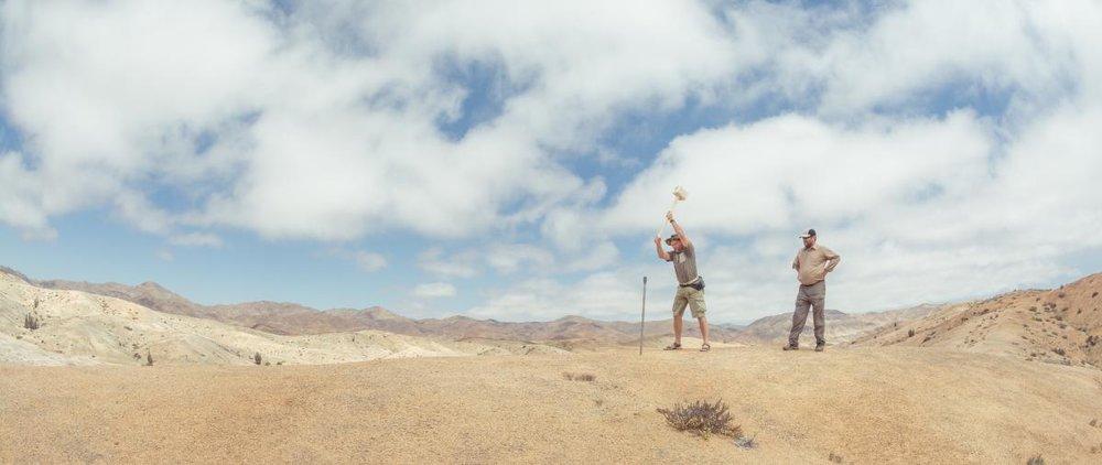 Geological excavation, Pan de Azúcar National Park, Atacama Desert, Chile. Credit: Leandro Paulino