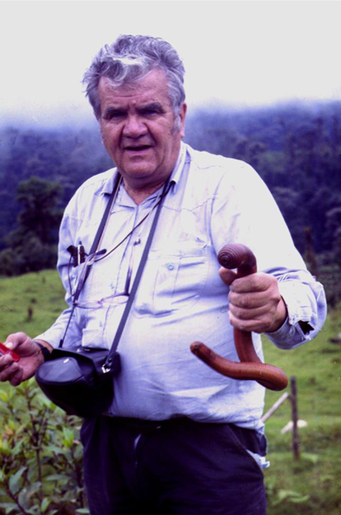András Zicsi and  Martiodrilus ischuros  Zicsi, 1990 in Santa Rosa, Prov. Pichincha, Ecuador, April 1990. This deep-burrowing giant earthworm was well-known to the local people; they knew when and where it would crawl up to the surface. András Zicsi (1928-2015) was Hungarian but his mother-tongue was German. He was a researcher in the Soil Zoology Group at the Hungarian Academy of Sciences and gave courses at the Eötvös Loránd University in Budapest. In 137 papers he described 237 new species of earthworms, mostly from Europe and South America; he erected and revised numerous genera, wrote identificatin keys ... His earthworm collection – among the largest worldwide – consists of roughly 100.000 specimens and more than 800 species. His legacy is now continued by one of his students, Csaba Csuzdi, the leading European earthworm taxonomist. Photo by: Csaba Csuzdi.