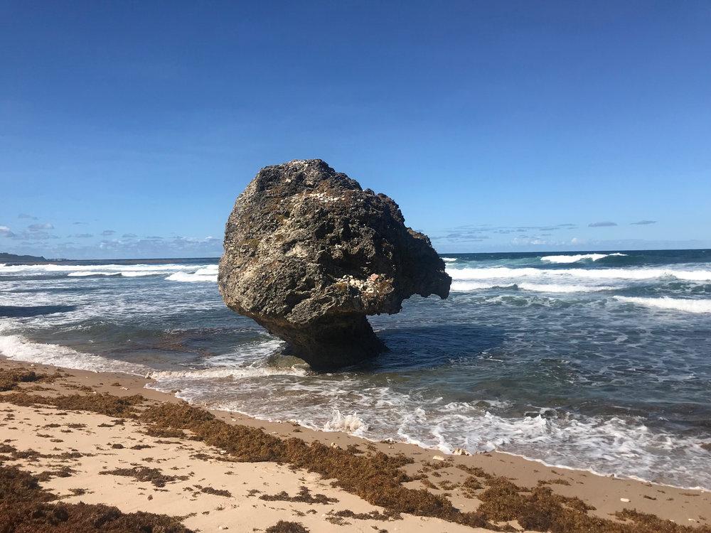 Bathsheba beach -