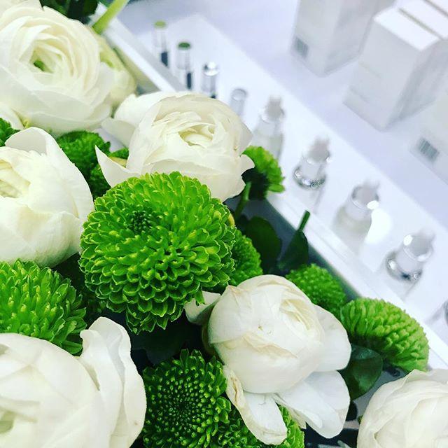 B E H I N D  T H E  S C E N E S 🌿 tonight we're introducing STELLAR Daily Serum to the CEW Beauty Awards for best Wellbeing Product 🤞🏼 #cewbeautyawards #greenbeauty #biohackingbeauty #facialoil #britishbeauty #everyonesawinner