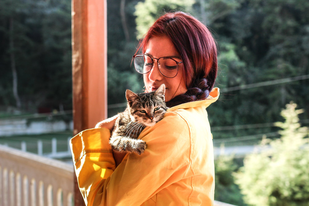 pets-have-allergies-too-pet-sitter-austin-tx