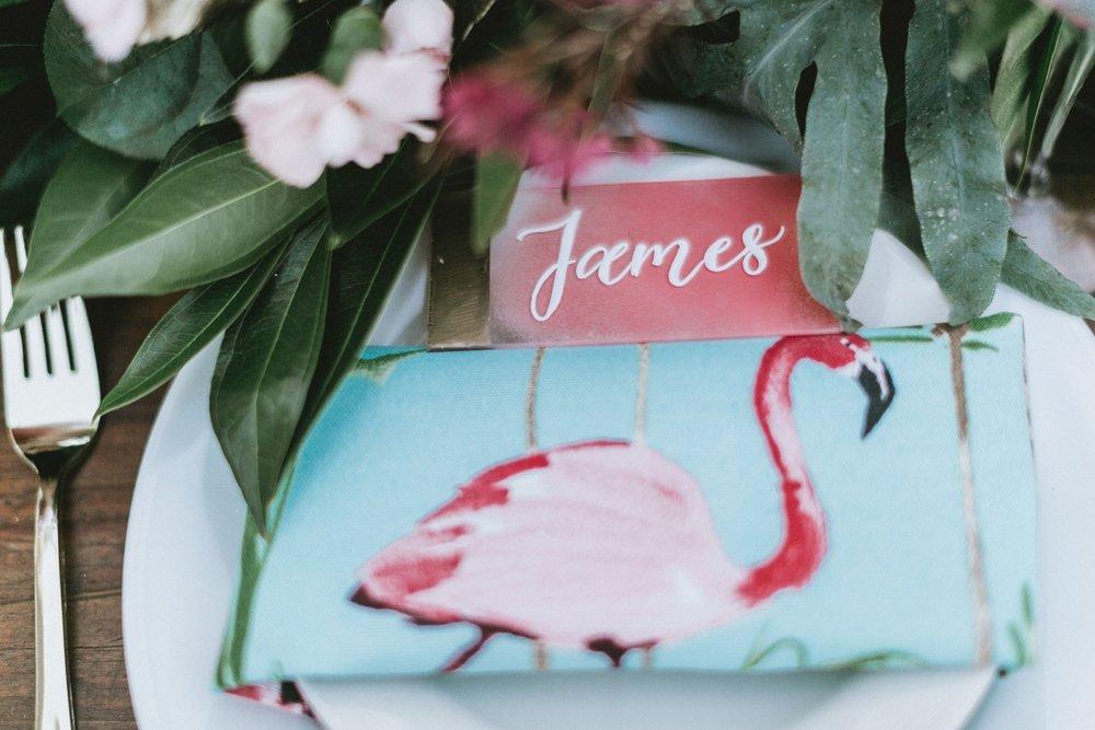 Flamingo Shoot5.jpg