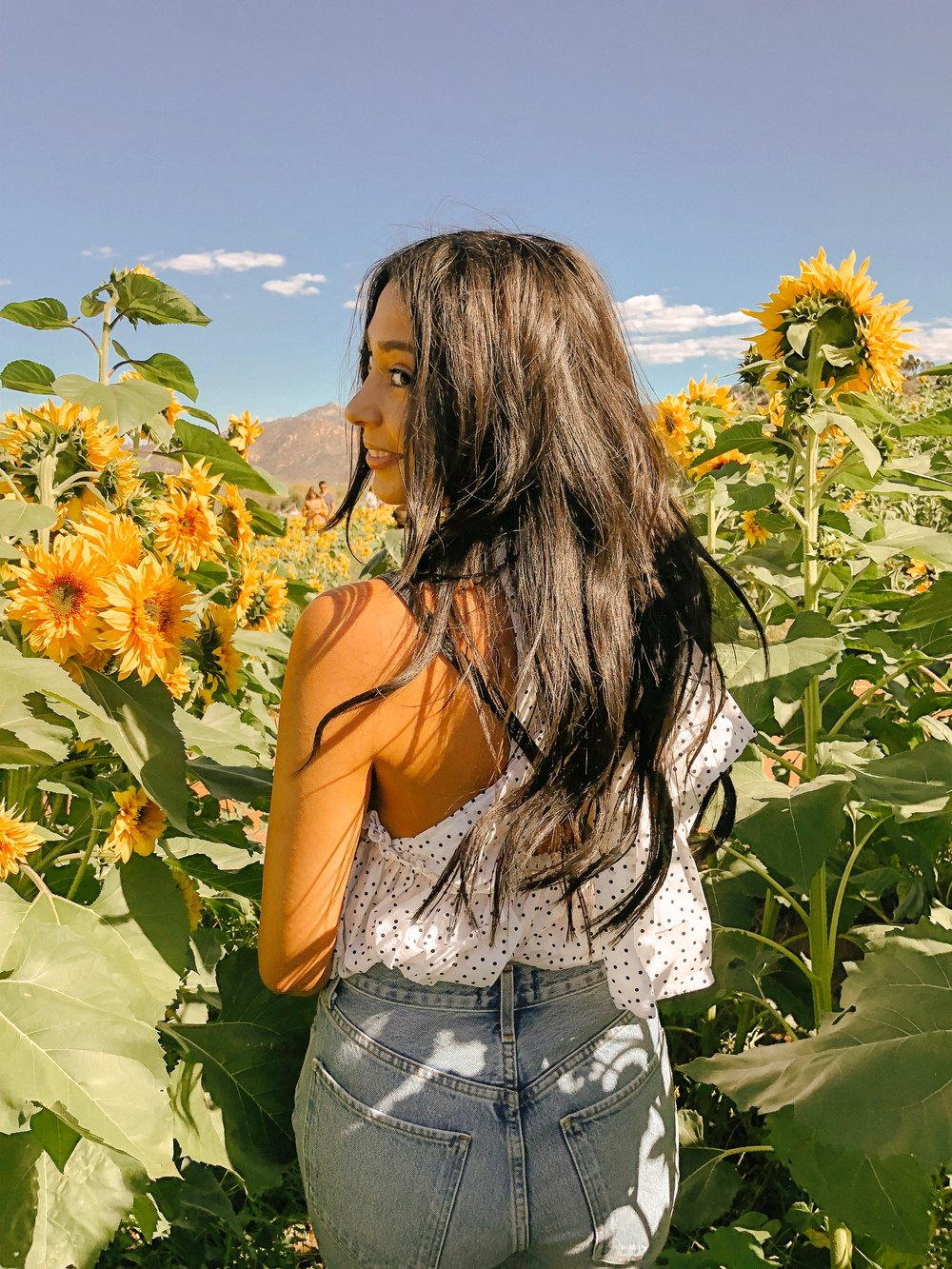 Secret Spot: Once you get to the tall sunflowers, a few rows up there is a dirt/mud path that leads to a gap that will surround you with sunflowers! The lighting in this gap is so good, we took a few photos here and they turned out great!