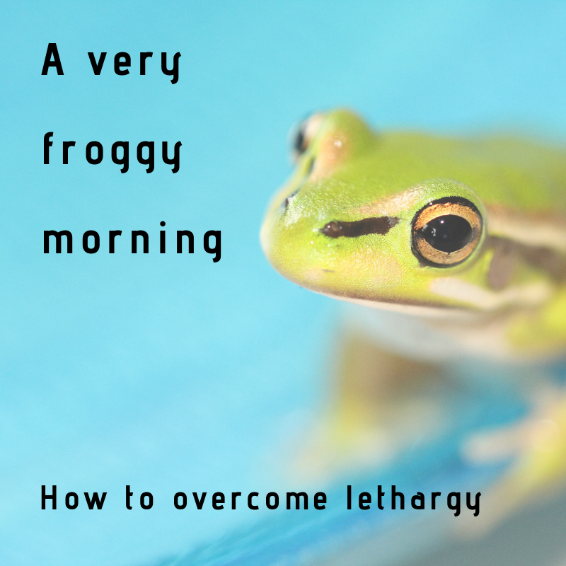 A Very Froggy Morning.png
