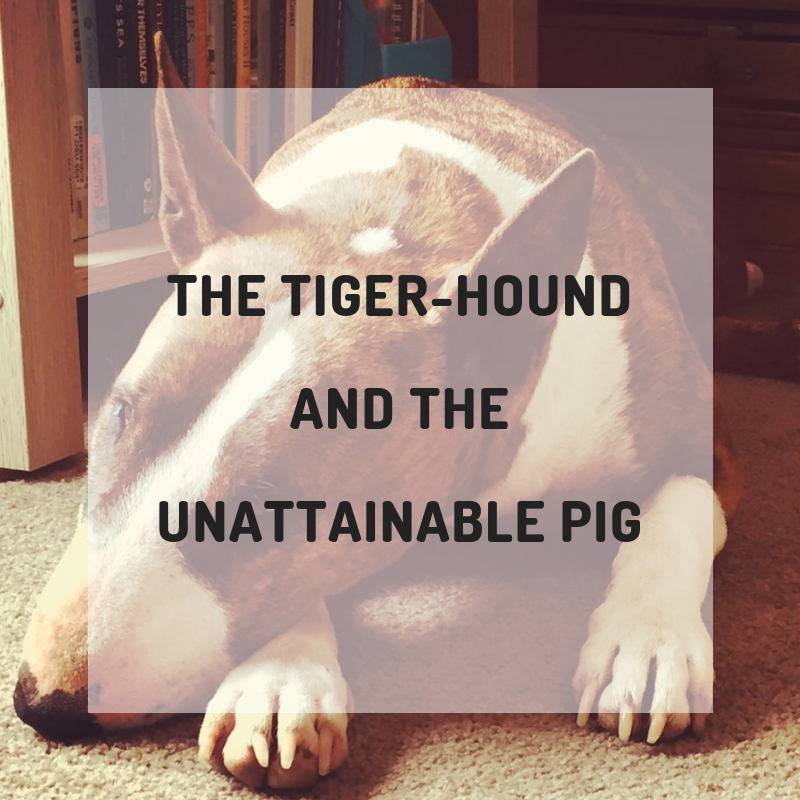 The Tiger-houndand theunattainable pig.png