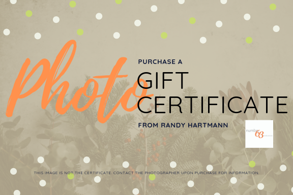 Photography Session Gift Certificates from San Diego Lifestyle Photographer