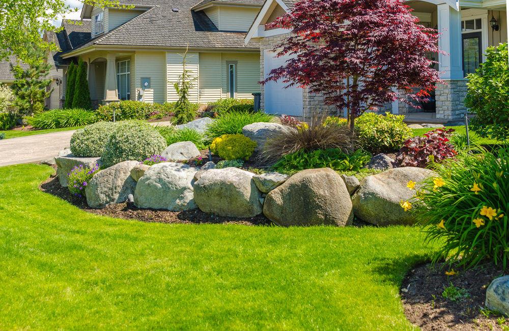Landscape, Yard & Garden