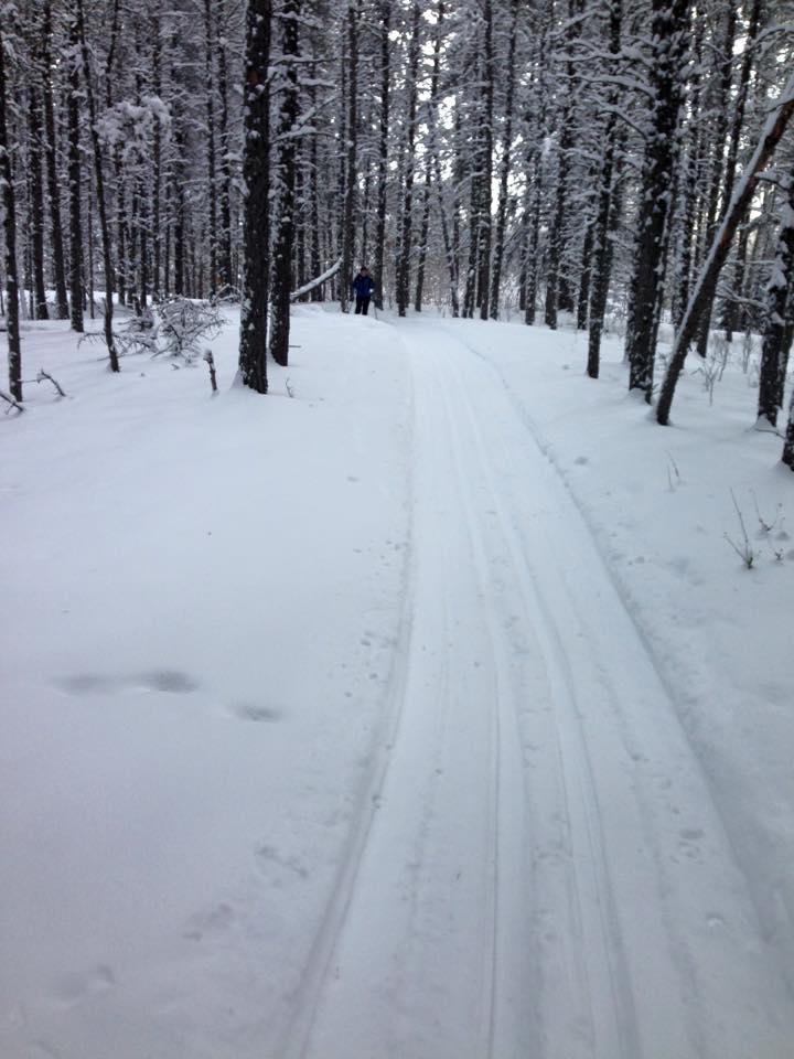 Hudson Bay Ski Club - Hudson Bay, SKContact: Gloria Stanggloriastang@yahoo.ca