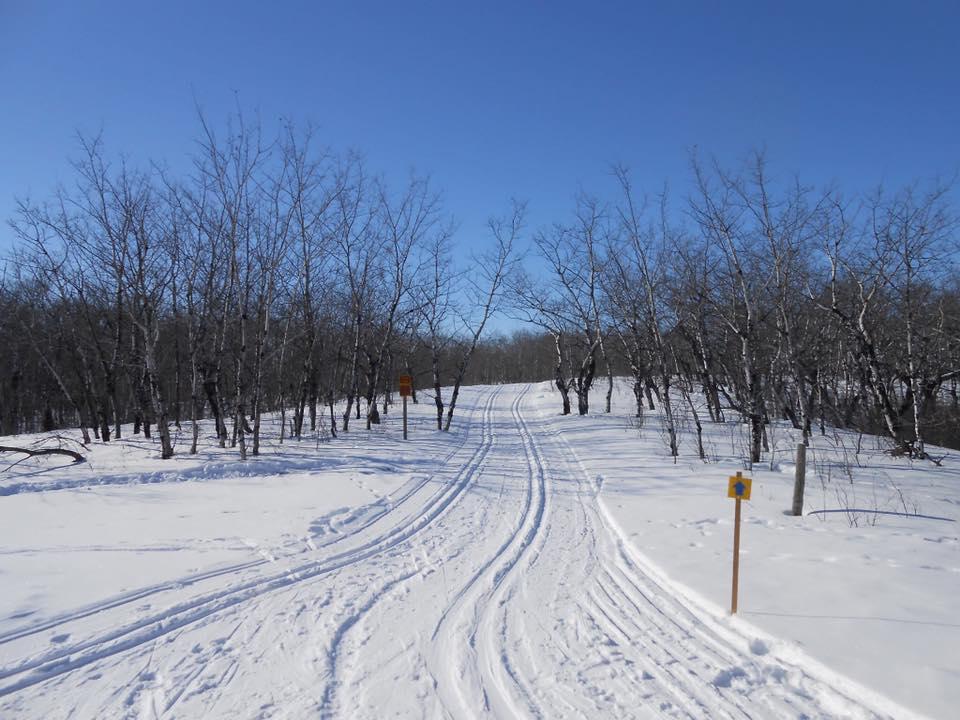 Good Spirit Cross Country Ski Club - Canora, SK and Good Spirit Lake Provincial ParkContact: Darryl Stevensonexar7@sasktel.net