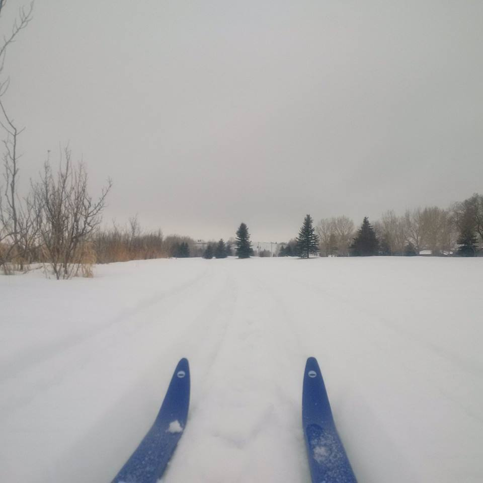 Swift Current Cross Country Ski Club - Swift Current, SKContact: Ed Doyleedbdoyle@gmail.com