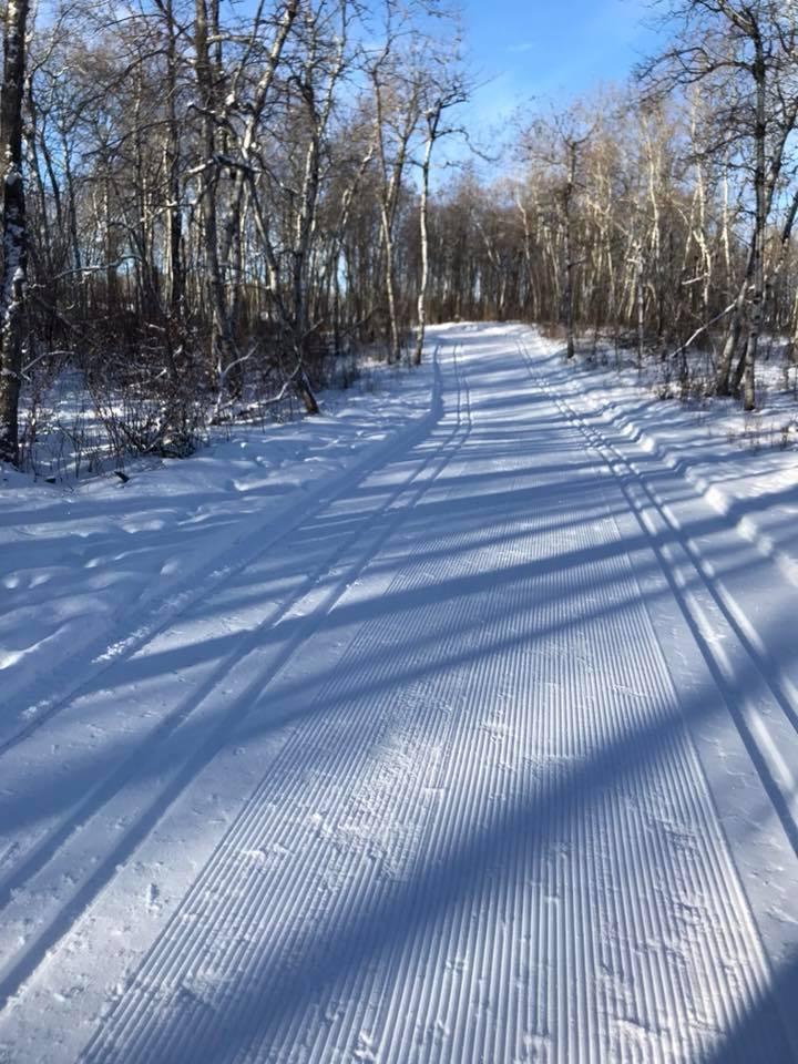 Rocanville Cross Country Ski Club - Rocanville, SKContact: Layne McFarlanelh.mcfarlane@sasktel.net
