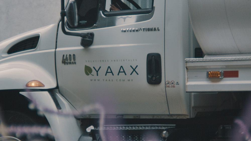 YAAX 1.jpg