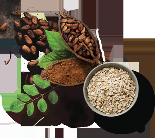 oats-cocoa-moringa.png