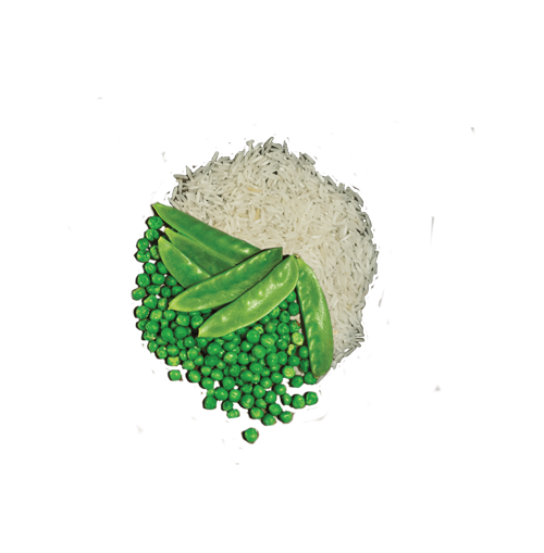 rice-pea.png