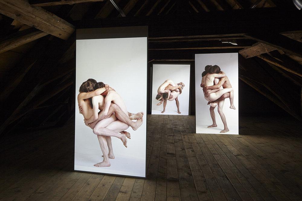Beast Mutation Series Installation, installation shot, Bieler Fototage, 2014 (installation shot by Daniel Mueller)