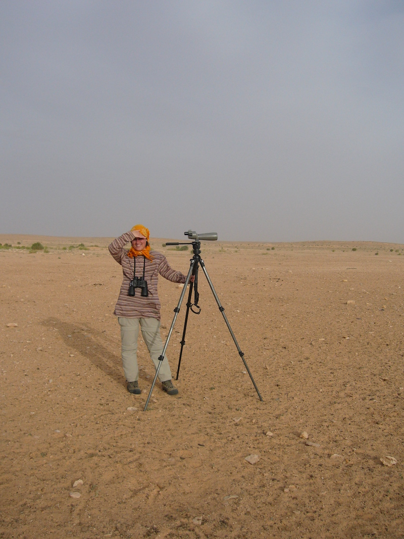 Birding in the desert. Tunisia, 2006. Photo © András Vasas