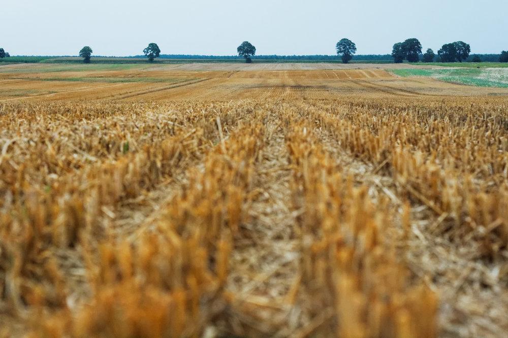farmer technology cut field