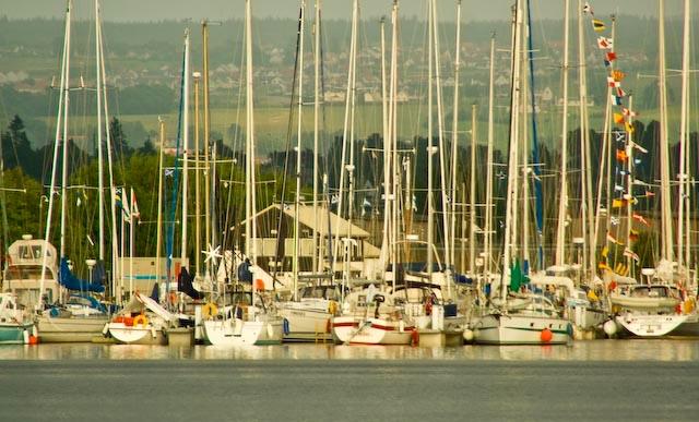 Sailboats on the Inverness Marina