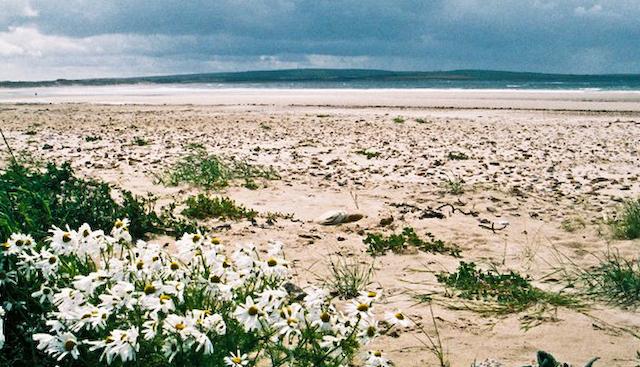 Caithness beach