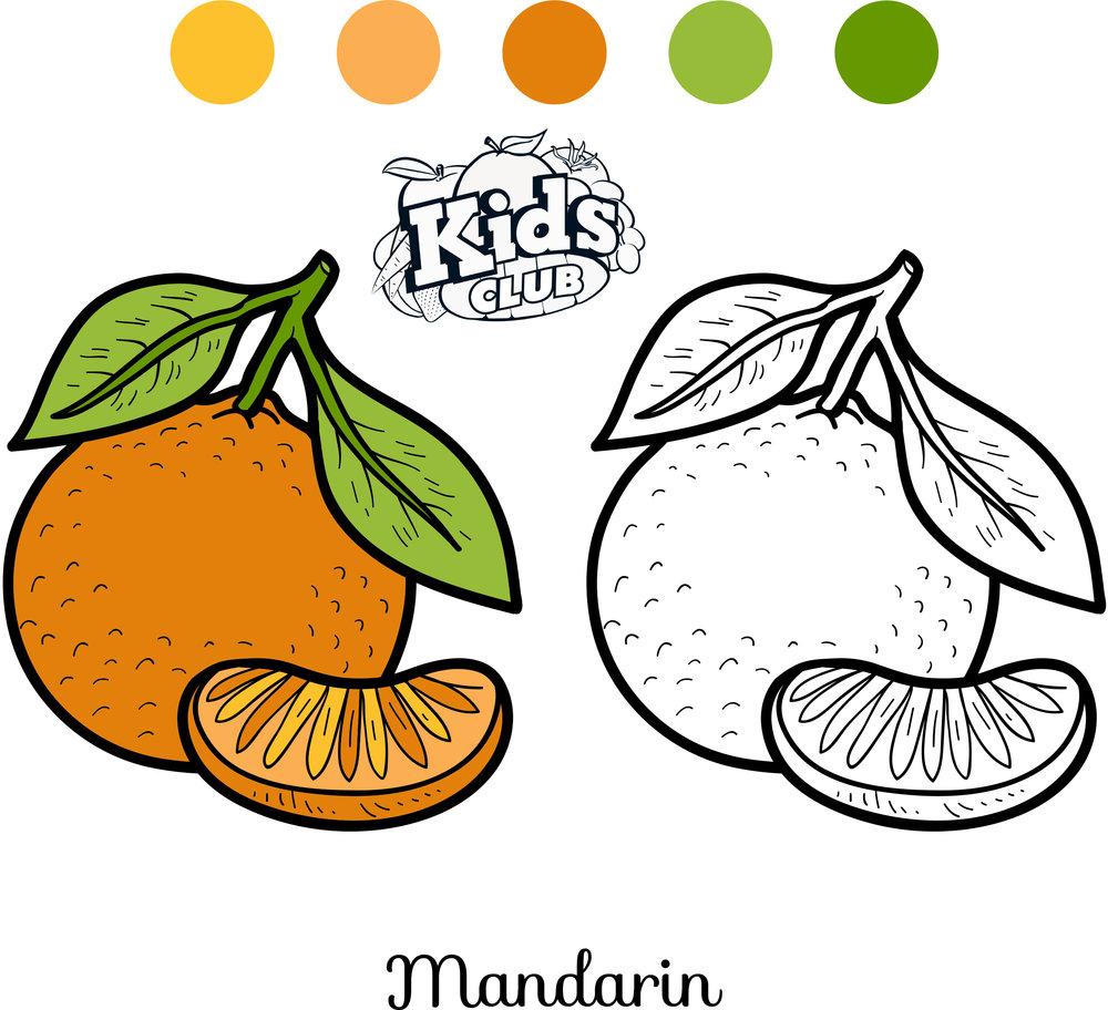 avocadocoloring.jpg