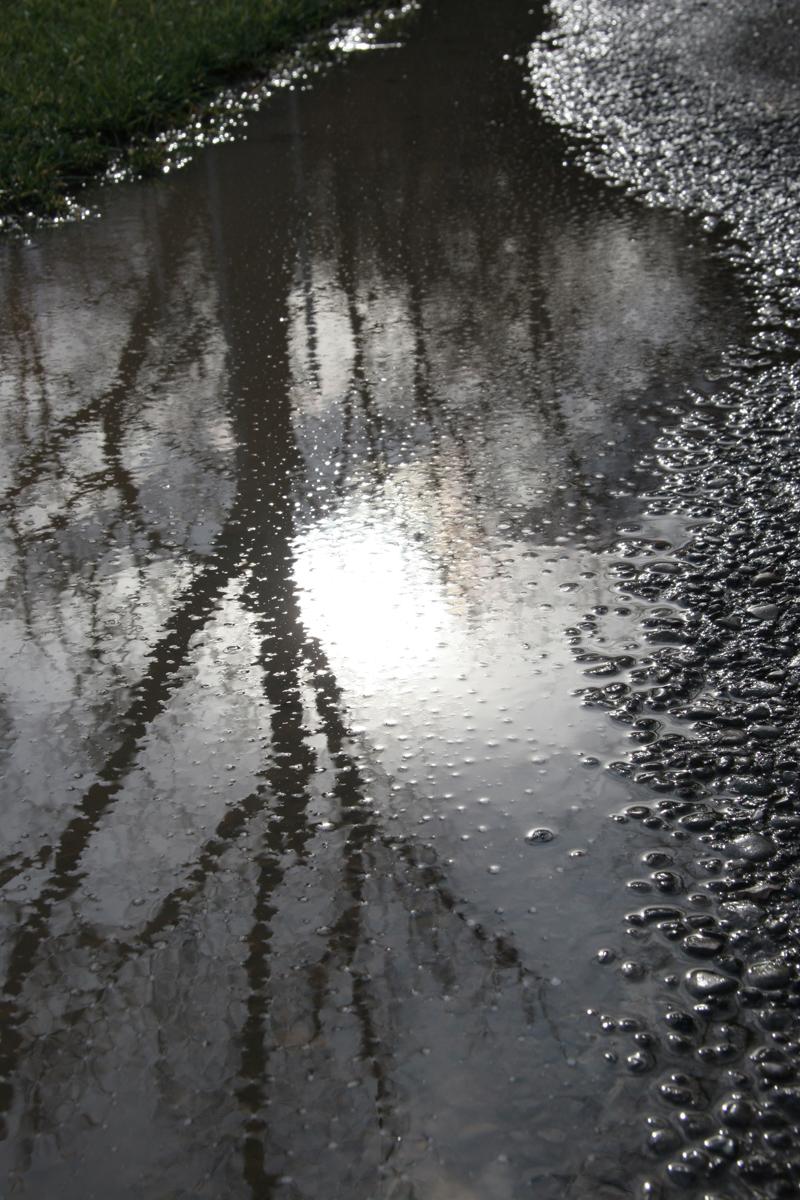 RainPuddle0034.jpg