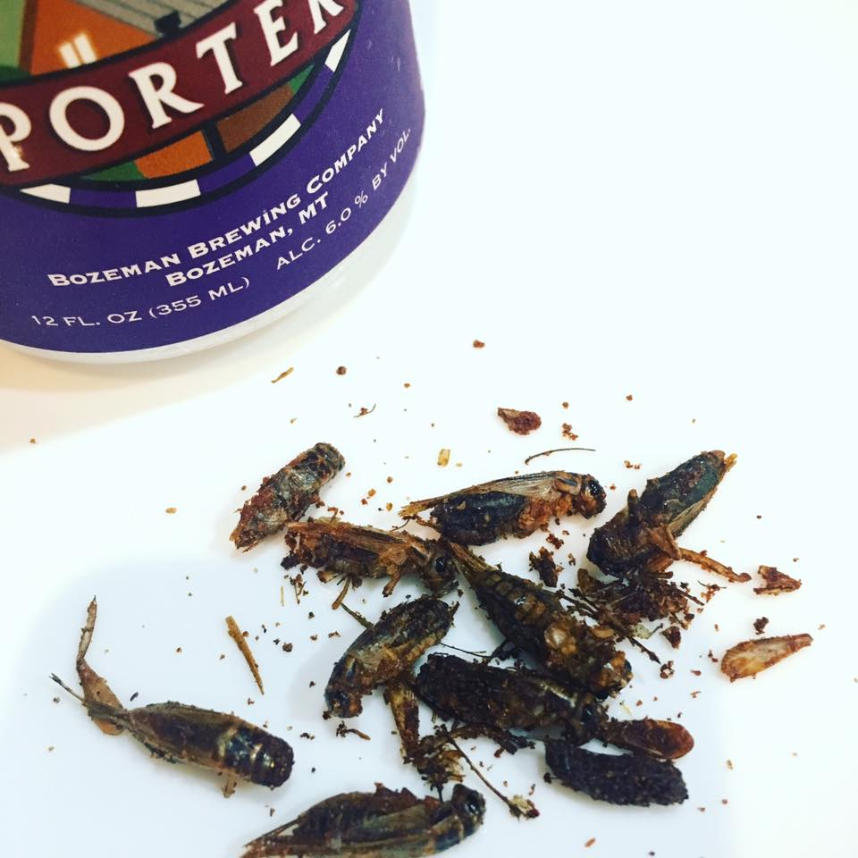 Whole Jumper Crickets -