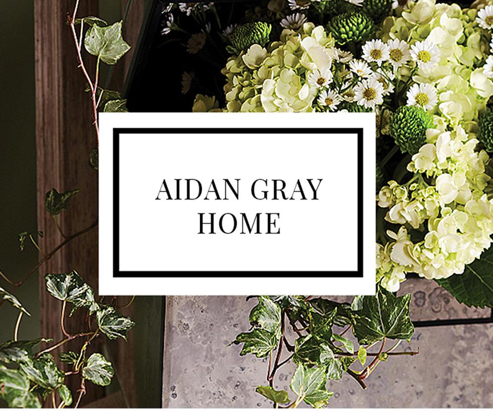 TheEdit-Cover-Aidan-Gray.jpg