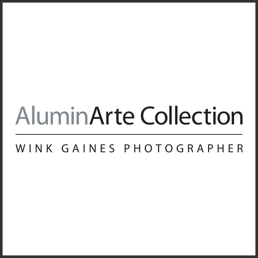 Wink Gaines Photographer
