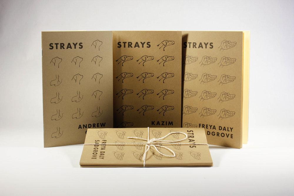 strays-4.jpg