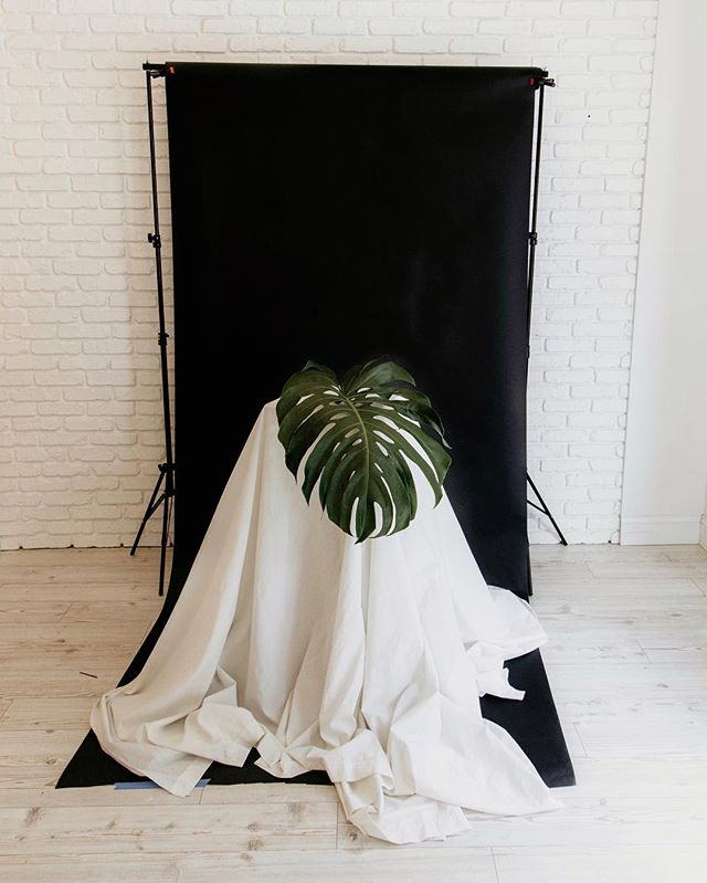 Props and backdrops. We have it all for your shoot. ✨ Portraits, editorials, product and even family shoots. Come check it out! 📸: @ru.andco  #smplcostudio