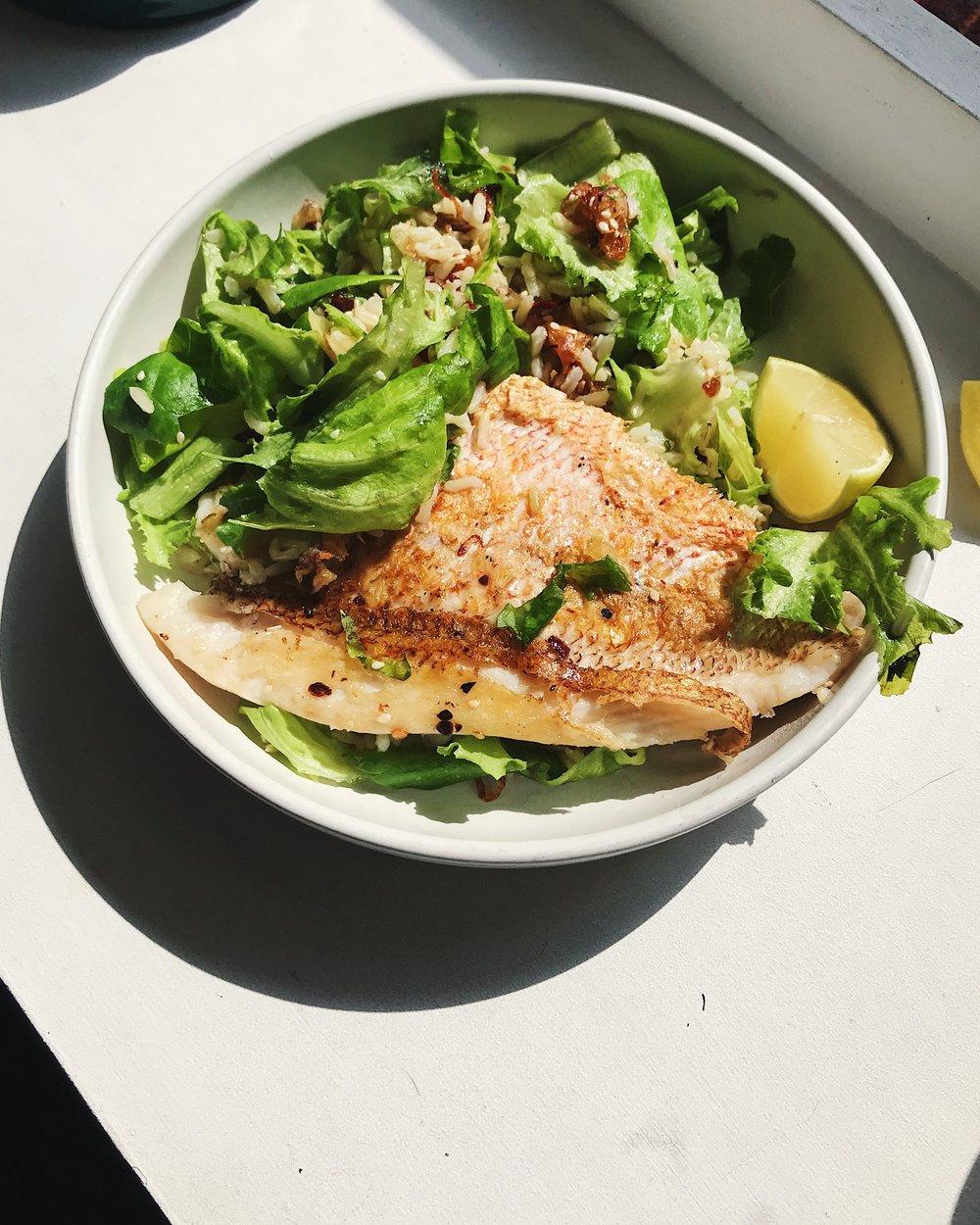 Snapper _ brown rice salad.JPG