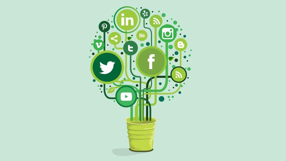 SocialMediaSuccess.jpg