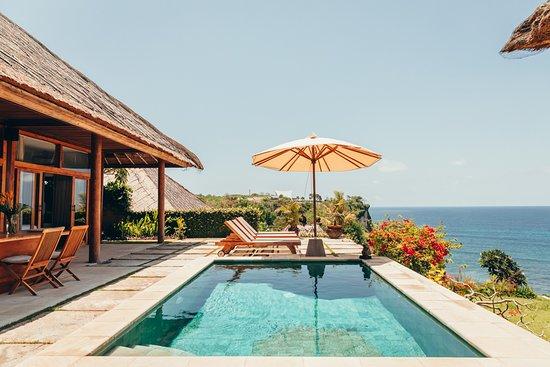 Lacuna Juice And Yoga Lacuna Juice And Yoga Retreats Bali