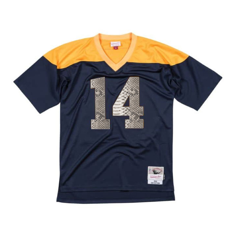 4f7ef8aa1 Don Hutson 1944 Green Bay Packers Legacy Python Jersey