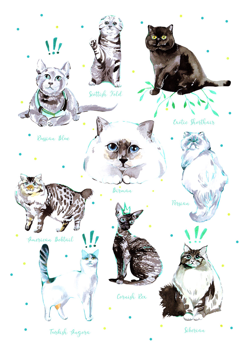 INKTOBER CATS POSTER BY ANCA PORA