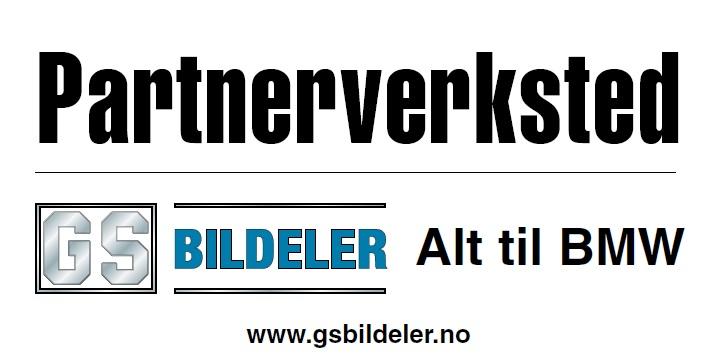 GS Partner.jpg