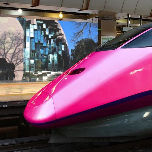 Our train system is a joke you only have to look at V/Lines twitter page to see that delays and cancellations are a regular occurrence. We need a fast and reliable train service that gets to Melbourne in under 30 minutes. Geelong deserves better! #lyons4geelong #vote1lyons #thinkdifferent #thinkindependent #pinkarmy #highspeedrail