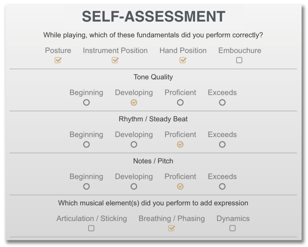 Self Assessment Box.png