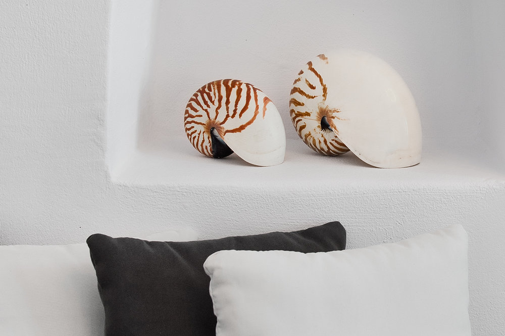 Shells and other beach finds are perfect decorative objects for greek island interiors.