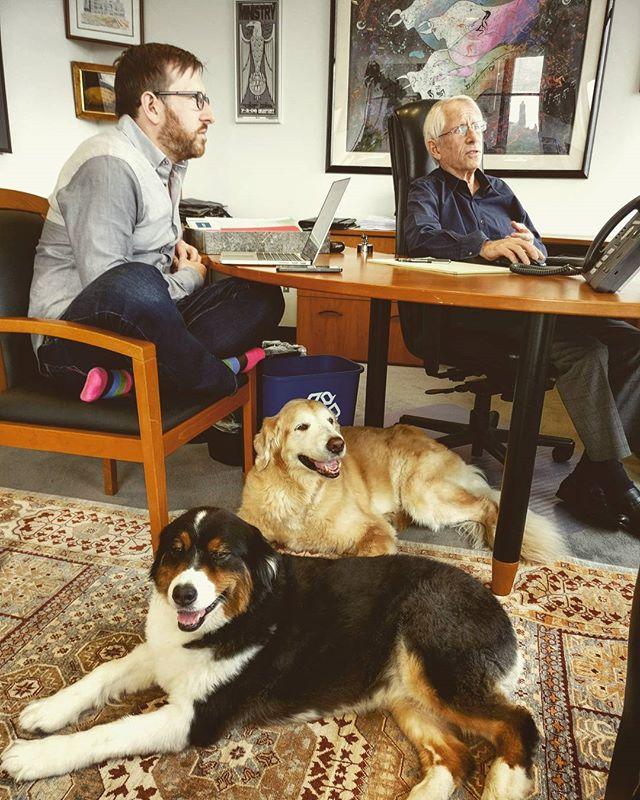 the G+G #complaintsdept finds partner meetings #boring & #ruff #officedogs #dogsoftheday #dogsofnyc #uws #uwsdog #dogs #buzzfeeddogs #dogstagram #accounting #cpa #nycofficedogs #nyc #marketingdog #dogoftheuws #centralparkpaws #dogsofig #dogsofinsta #dogloversfeed #doglovers #doglove #upperwestside  #barks #instadog